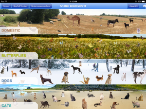 Animal Discovery for iPad