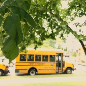 CVI vs. the school bus