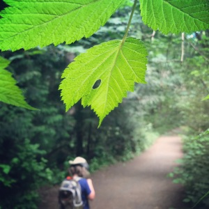 Hiking with a CVI perspective